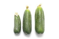 Drie komkommers die op wit worden geïsoleerdr Stock Fotografie