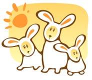 Drie konijnen en zon Stock Afbeeldingen