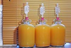 Drie korfflessen die naar huis gemaakte cider maken Stock Fotografie