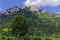 Drie kronenpiek in Pieniny-bergen Stock Fotografie