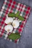 Drie kruidnagels van knoflook met basilicum Royalty-vrije Stock Afbeelding