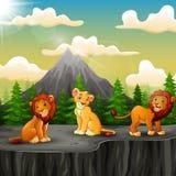 Drie leeuwbeeldverhaal die op de berg van een klip genieten stock illustratie