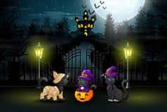 Drie leuke katten bij de partijen van nachthalloween royalty-vrije illustratie