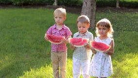 Drie leuke kleine jonge geitjes die watermeloen in de zomer Sunny Park in heet weer eten stock videobeelden