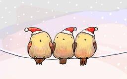 Drie leuke vogels in Kerstmishoeden. royalty-vrije illustratie