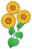 Drie leuke zonnebloemen royalty-vrije illustratie