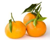 Drie mandarijntjes over wit stock afbeelding