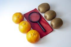 Drie mandarins tegen drie kiwien met zwart vergrootglas royalty-vrije stock afbeelding