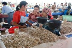 Drie meisjes verkopen zonnebloemzaden op de markt Royalty-vrije Stock Afbeeldingen