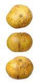 Drie meningen van pompelmoes Stock Foto