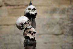 Drie menselijke schedels in bijlage aan een houten aar met steenkasteel stock foto's