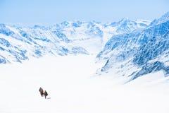 Drie mensen die op sneeuwberg wandelen Royalty-vrije Stock Afbeeldingen