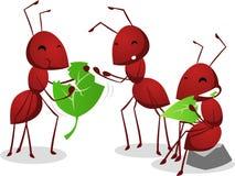 Drie Mieren groen eten doorbladert stock illustratie