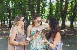 Drie mooie jonge boho elegante modieuze meisjes die in park lopen Stock Afbeeldingen