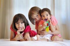 Drie mooie jonge geitjes die samen spelen Stock Foto