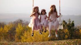 Drie mooie meisjes die op een schommeling onder een grote boom slingeren stock videobeelden