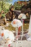 Drie mooie onderleggers voor glazen met tedere bloemen en scharlaken linten Royalty-vrije Stock Foto