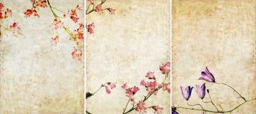 Drie mooie texturen als achtergrond Royalty-vrije Stock Foto