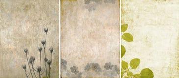 Drie mooie texturen als achtergrond Stock Foto