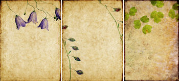 Drie mooie texturen als achtergrond Stock Foto's