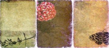 Drie mooie texturen als achtergrond royalty-vrije stock fotografie