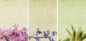 Drie mooie texturen als achtergrond Stock Afbeeldingen