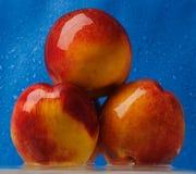 Drie natte perziken Royalty-vrije Stock Foto's