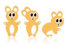 Drie oranje konijnen Royalty-vrije Stock Foto's