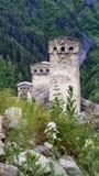 Drie Oude Georgische Familietorens in Svaneti op de Achtergrond van een Groen Landschap, Hogere Svaneti, Georgië stock foto