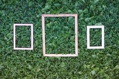 Drie oude kaders op groene grasachtergrond Stock Afbeelding