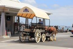 Drie paarden met een vervoer en koetsier Royalty-vrije Stock Foto's