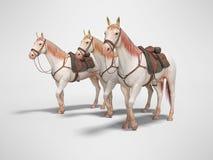 Drie paarden in teugel gaan 3d teruggeven op grijze achtergrond met schaduw stock illustratie