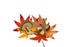 Drie paddestoelen liggen op multi-coloured bladeren vector illustratie