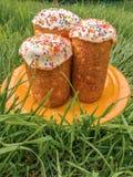 Drie Pasen-cakestribune in een oranje plaat op het groene gras Stock Afbeelding