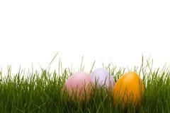Drie pastelkleurpaaseieren in gras Stock Foto's