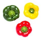 Drie peper in rode geel en groen Royalty-vrije Stock Afbeelding