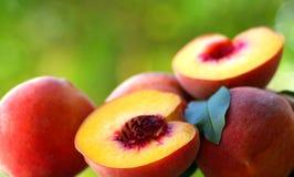 Drie perziken. Royalty-vrije Stock Afbeeldingen