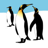 Drie pinguïnen Stock Foto's