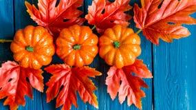 Drie plastic pompoenen en het rode concept van de bladerendaling Stock Foto's