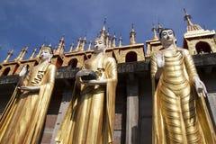 Drie posities van de standbeelden van Boedha royalty-vrije stock foto's