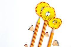 Drie potloodbloemen Royalty-vrije Stock Afbeeldingen