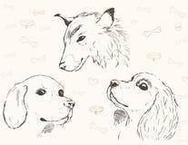 Drie potloodschetsen van honden Stock Afbeelding