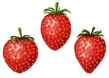 Drie rijpe aardbeien royalty-vrije illustratie