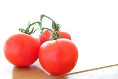Drie rijpe tomaten op de wijnstok met heldere backlight Royalty-vrije Stock Fotografie