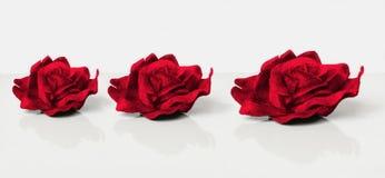 Drie rode fluweelrozen Royalty-vrije Stock Fotografie
