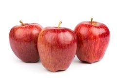 Drie rode geïsoleerdei appelen Stock Foto's