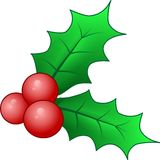 Drie Rode Holly Berries Stock Foto
