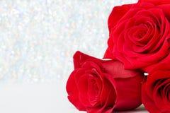 Drie Rode Rozen met bokeachtergrond exemplaarruimte - Valentijnskaarten en 8 Maart-Moeder Women& x27; s Dagconcept royalty-vrije stock afbeelding