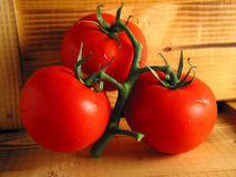 Drie rode tomaten op hout stock afbeelding