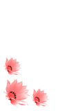 Drie roze bloemen royalty-vrije illustratie
